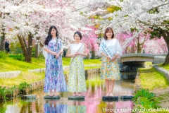 SpringColorMelody
