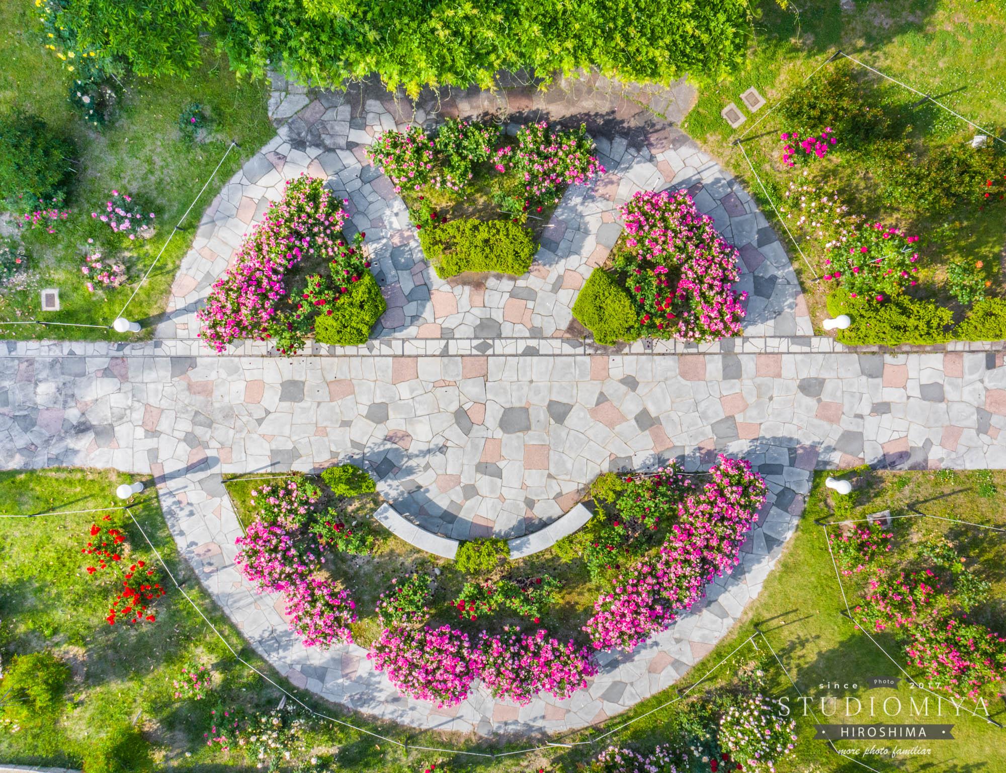 牛田バラ園公式サイトへようこそ.牛田バラ園は広島市のはずれの丘の上にある小さなバラ園です